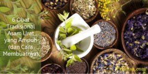 6 Obat Tradisional Asam Urat yang Ampuh (dan Cara Membuatnya)