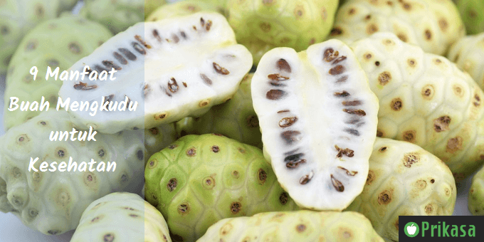 Manfaat buah mengkudu