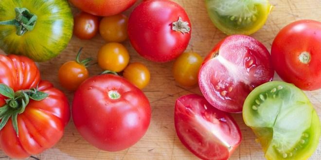 Ilustrasi manfaat tomat